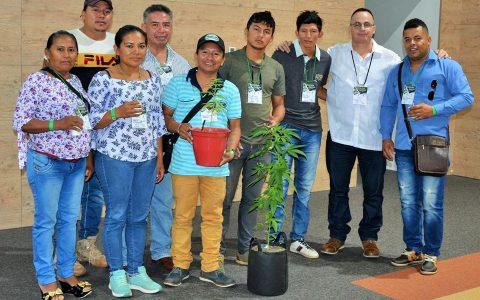 1er Foro Internacional Oportunidades y Retos de la Industria del Cannabis para la Orinoquia -Indigenas Orocue