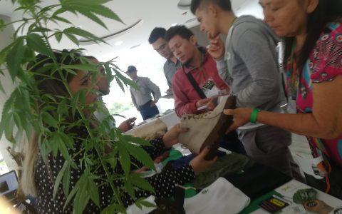 1er Foro Internacional Oportunidades y Retos de la Industria del Cannabis para la Orinoquia-productos